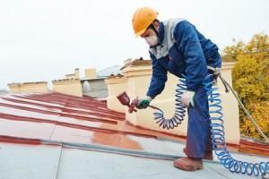 Peinture de toiture Carbon-Blanc
